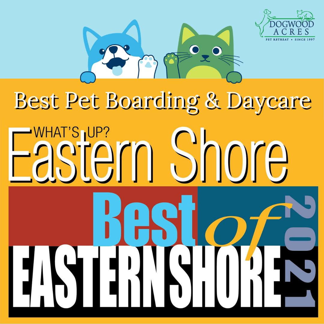 Best of Eastern Shore
