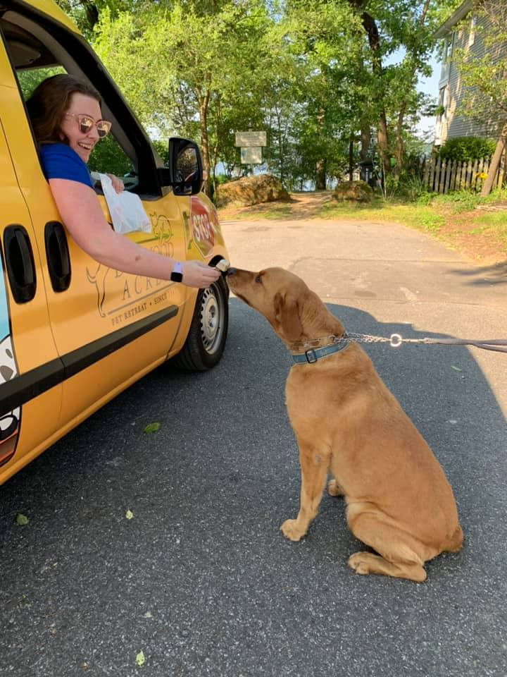 Pupsicle Truck